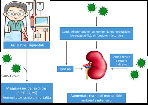 Figura 1: Insufficienza renale come fattore di rischio di mortalità in corso di Covid-19