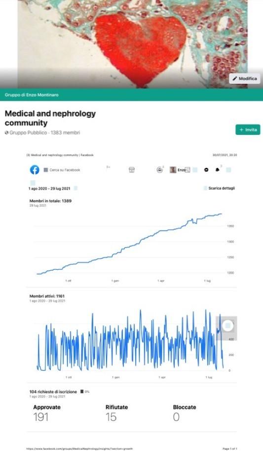Figura 15: Grafico rappresentante gli insight del gruppo facebook Medical e Nephrology Community che riporta la crescita dei membri nell'ultimo anno